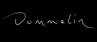 dommelin-logo